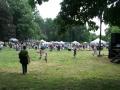 riverfest-393_jpg-w800-h600